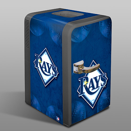 RaysFridge.jpg